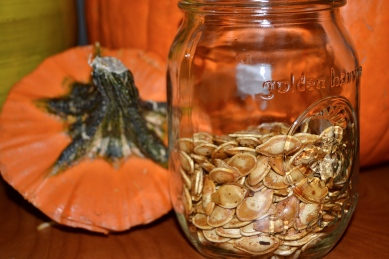 Perfect Pumpkin Seeds Photo by: Jessica Whitehead